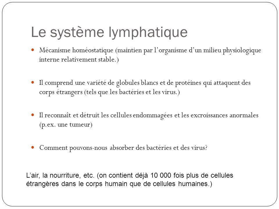 Le système lymphatique Mécanisme homéostatique (maintien par lorganisme dun milieu physiologique interne relativement stable.) Il comprend une variété
