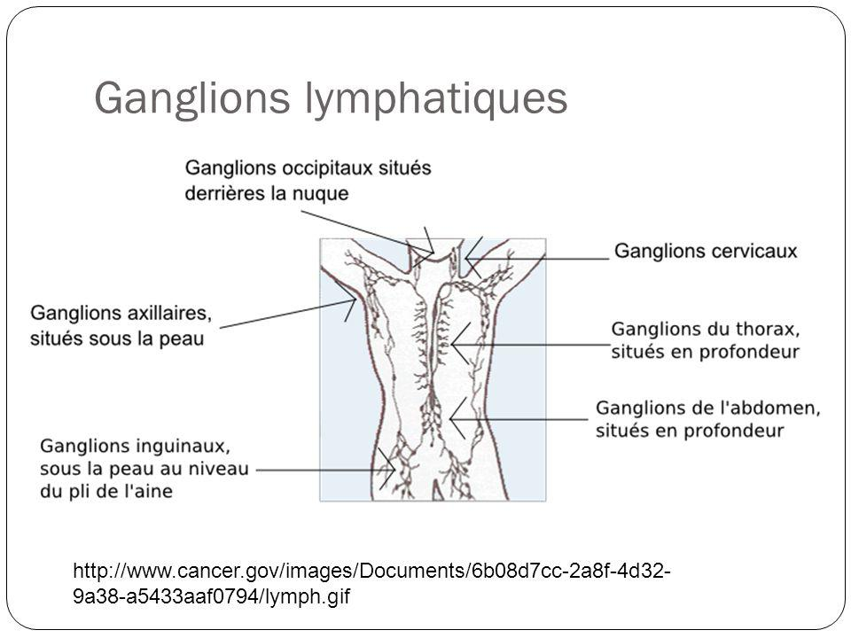 Ganglions lymphatiques http://www.cancer.gov/images/Documents/6b08d7cc-2a8f-4d32- 9a38-a5433aaf0794/lymph.gif