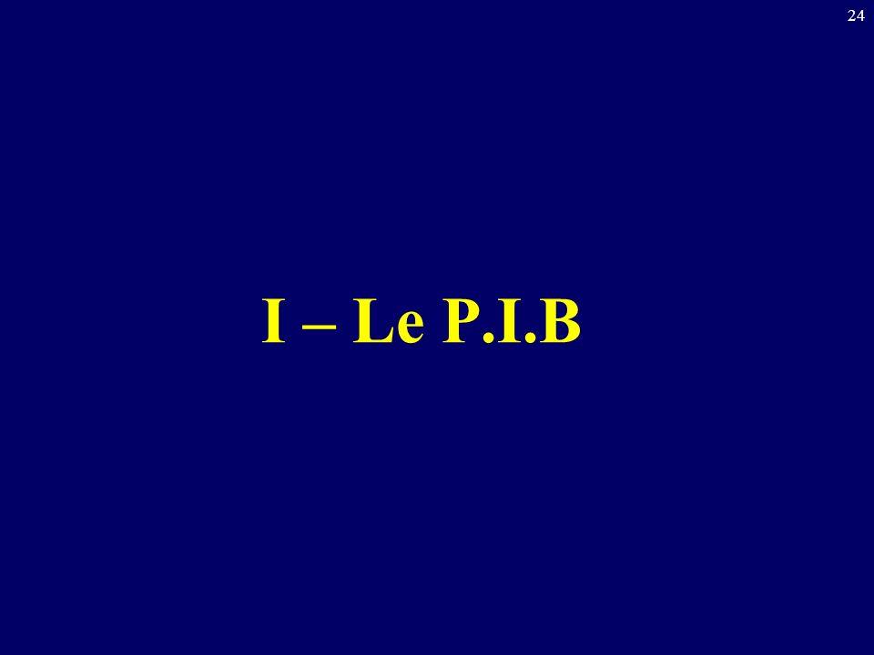 24 I – Le P.I.B
