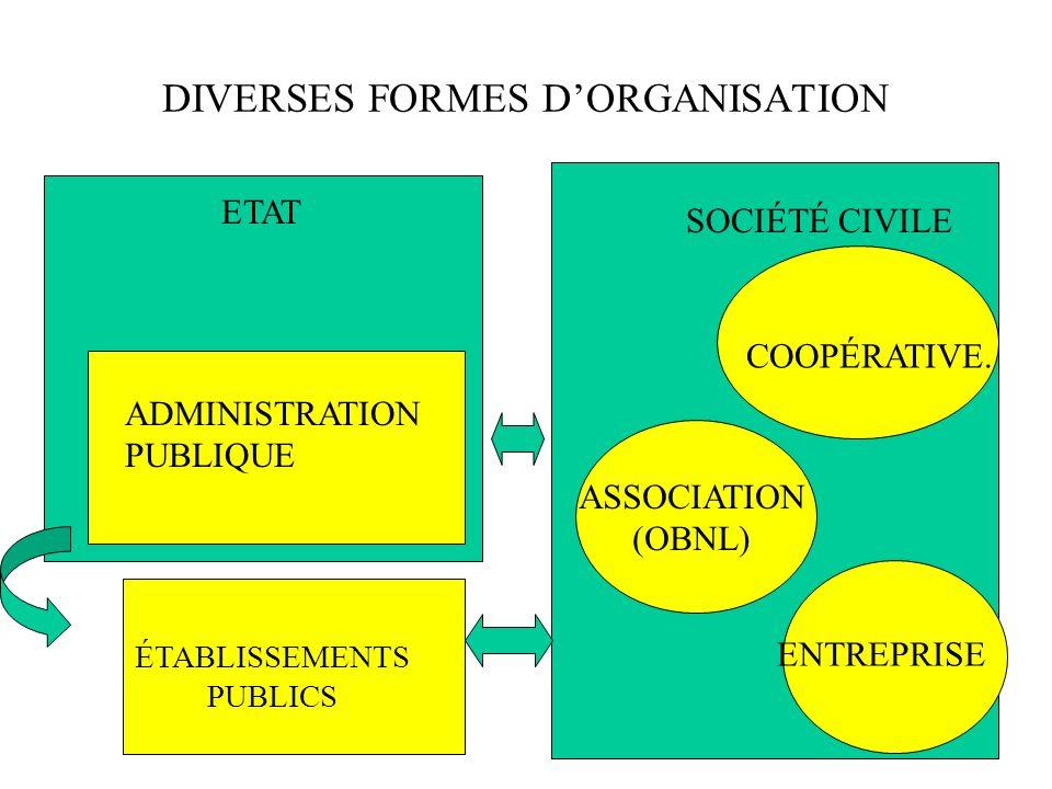 ORGANISATION PARTICULIÈRE INPUTS: –PROBLÈMES SOCIAUX –INTERVENANTS PROFESSIONNELS & NON PROFESSIONNELS PROCESSUS: AIDE, MOBILISATION PRODUITS: ACTION