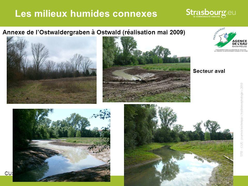CUS - Remy Gentner 12 Les milieux humides connexes Annexe de lOstwaldergraben à Ostwald (réalisation mai 2009) Secteur aval STB – CUS - journée technique « hydromorphologie » 2010