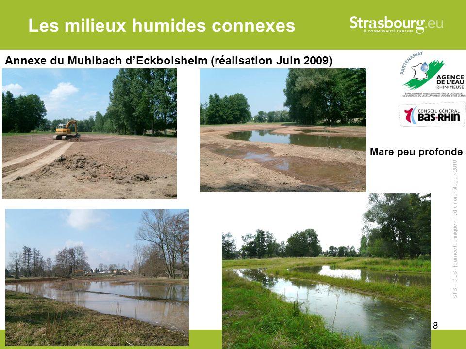 CUS - Remy Gentner 18 Les milieux humides connexes Annexe du Muhlbach dEckbolsheim (réalisation Juin 2009) Mare peu profonde STB – CUS - journée technique « hydromorphologie » 2010