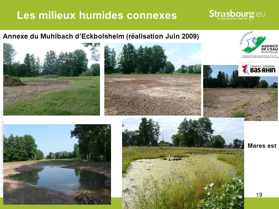 CUS - Remy Gentner 19 Les milieux humides connexes Annexe du Muhlbach dEckbolsheim (réalisation Juin 2009) Mares est STB – CUS - journée technique « hydromorphologie » 2010