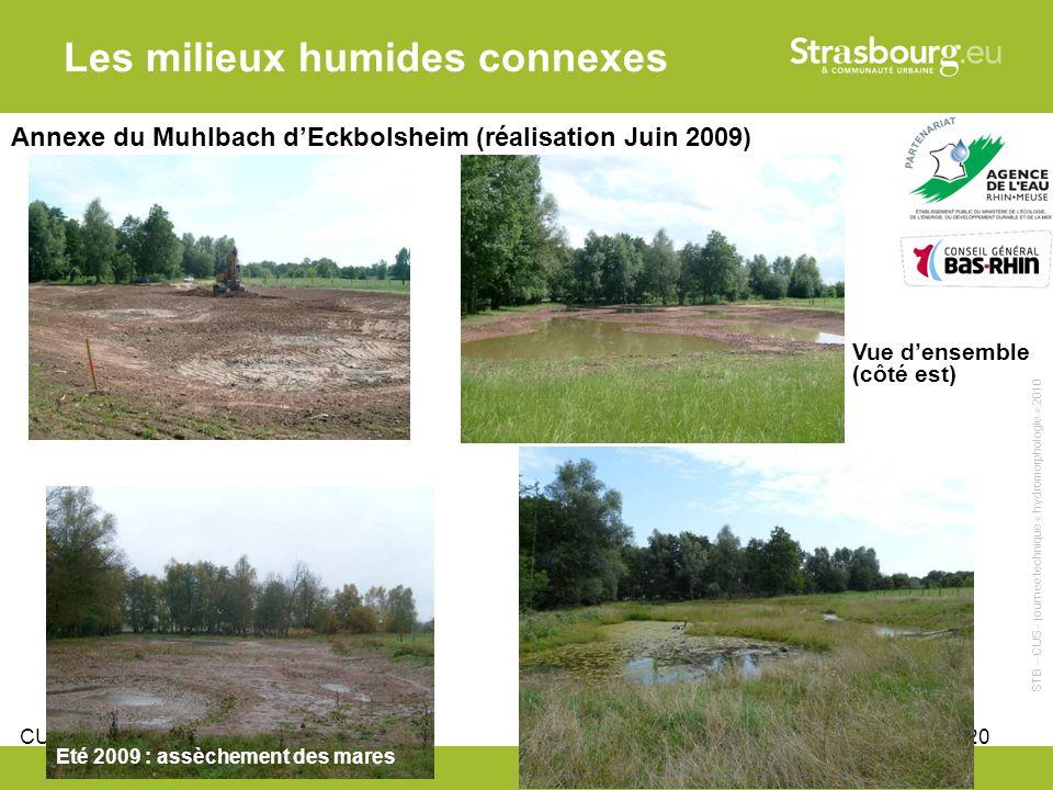 CUS - Remy Gentner 20 Les milieux humides connexes Annexe du Muhlbach dEckbolsheim (réalisation Juin 2009) Vue densemble (côté est) Eté 2009 : assèchement des mares STB – CUS - journée technique « hydromorphologie » 2010