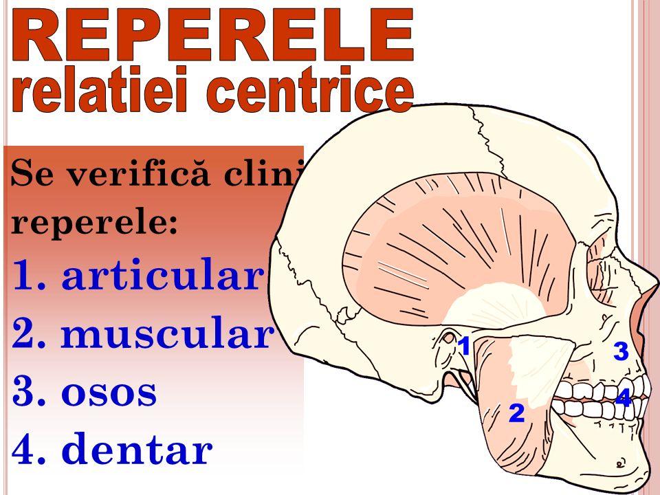 Se verific ă clinic reperele: 1. articular 2. muscular 3. osos 4. dentar