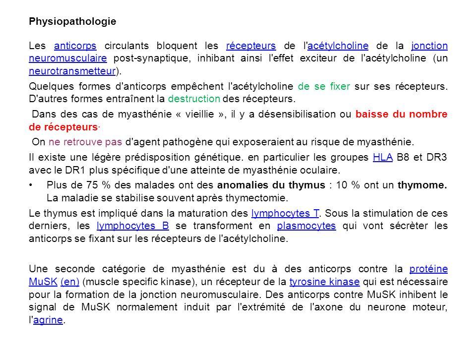 Physiopathologie Les anticorps circulants bloquent les récepteurs de l'acétylcholine de la jonction neuromusculaire post-synaptique, inhibant ainsi l'