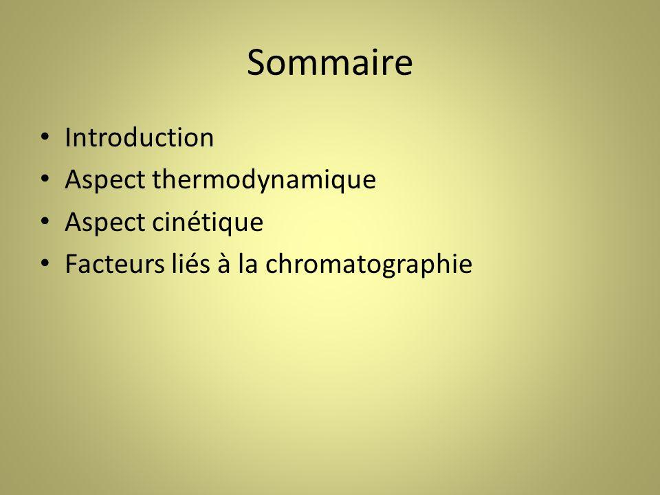Sommaire Introduction Aspect thermodynamique Aspect cinétique Facteurs liés à la chromatographie