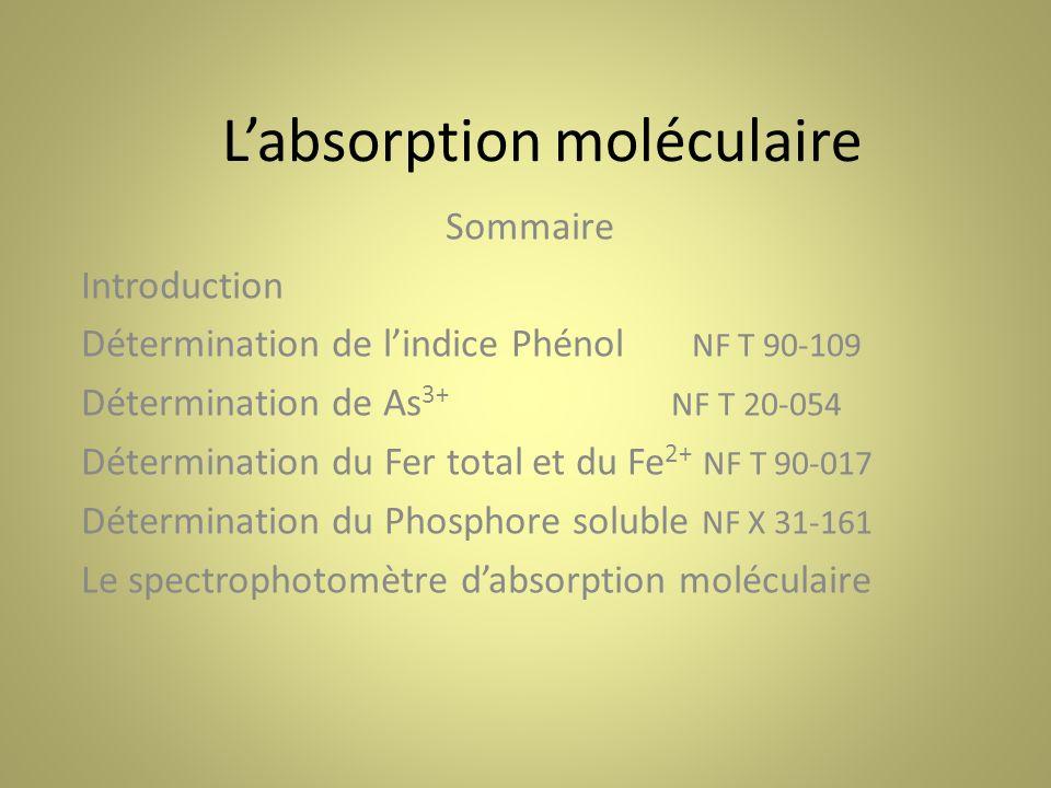 Labsorption moléculaire Sommaire Introduction Détermination de lindice Phénol NF T 90-109 Détermination de As 3+ NF T 20-054 Détermination du Fer total et du Fe 2+ NF T 90-017 Détermination du Phosphore soluble NF X 31-161 Le spectrophotomètre dabsorption moléculaire