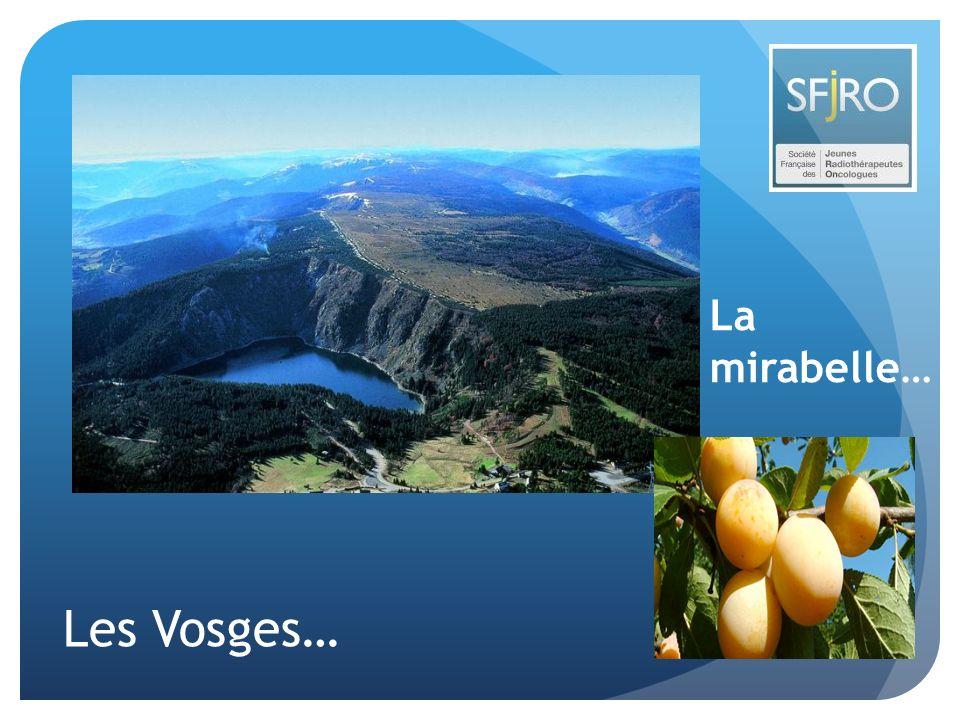 Les Vosges… La mirabelle…