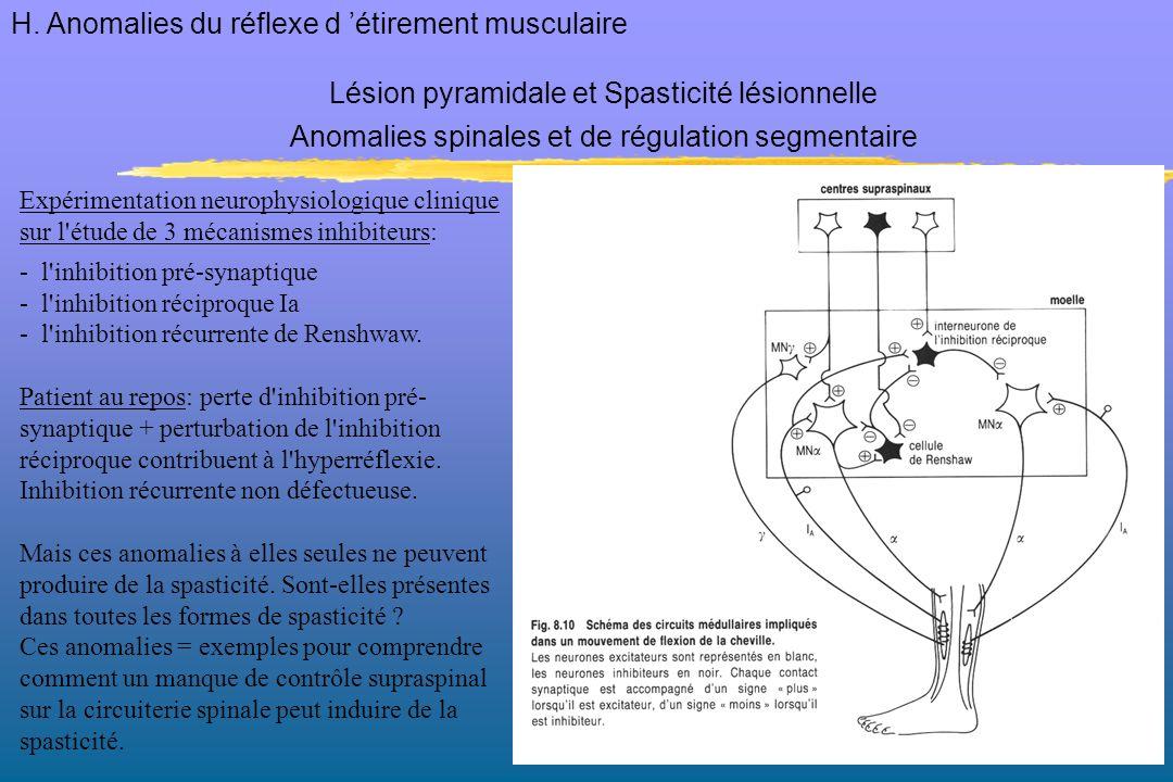Expérimentation neurophysiologique clinique sur l'étude de 3 mécanismes inhibiteurs: - l'inhibition pré-synaptique - l'inhibition réciproque Ia - l'in