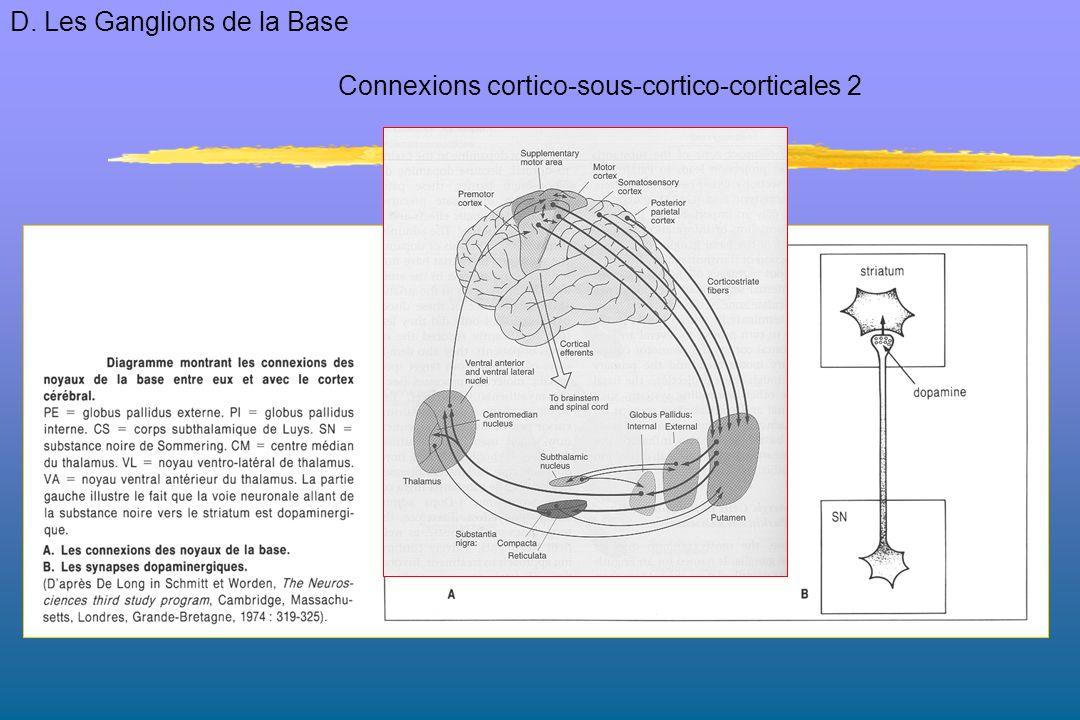 Connexions cortico-sous-cortico-corticales 2 D. Les Ganglions de la Base
