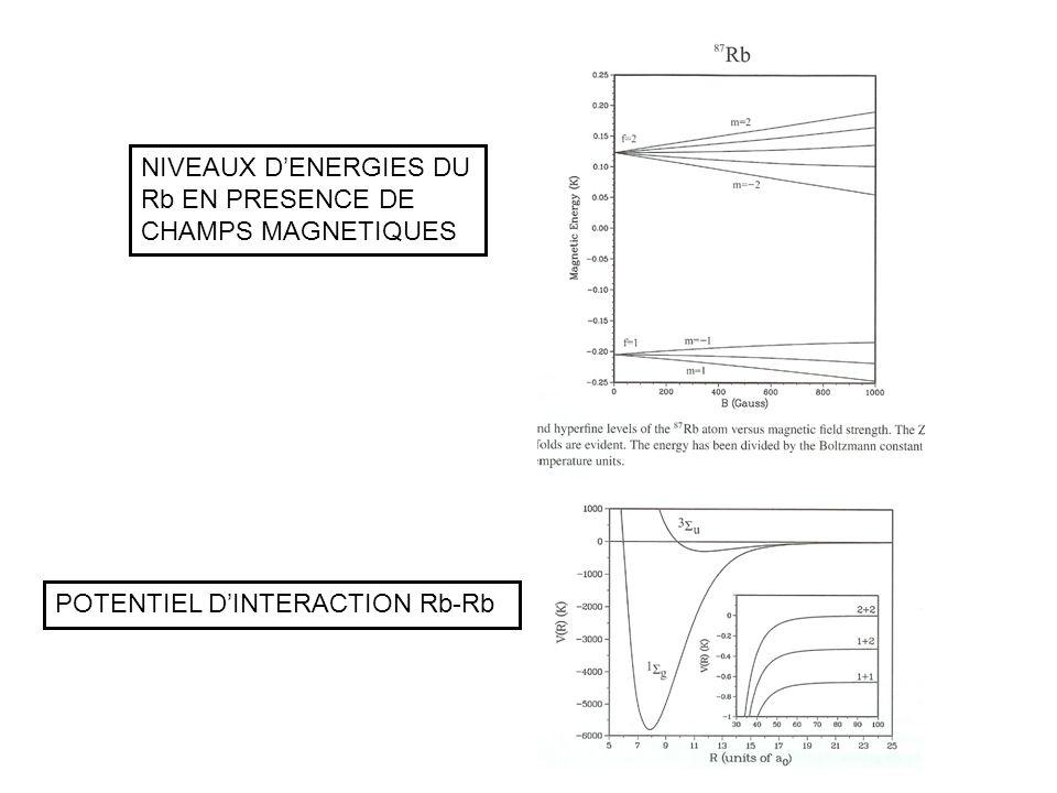 POTENTIEL DINTERACTION Rb-Rb NIVEAUX DENERGIES DU Rb EN PRESENCE DE CHAMPS MAGNETIQUES