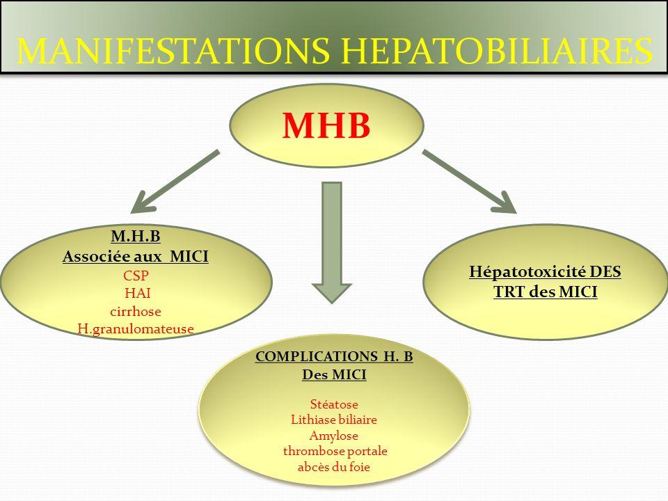 M.H.B Associée aux MICI CSP HAI cirrhose H.granulomateuse Hépatotoxicité DES TRT des MICI COMPLICATIONS H. B Des MICI Stéatose Lithiase biliaire Amylo