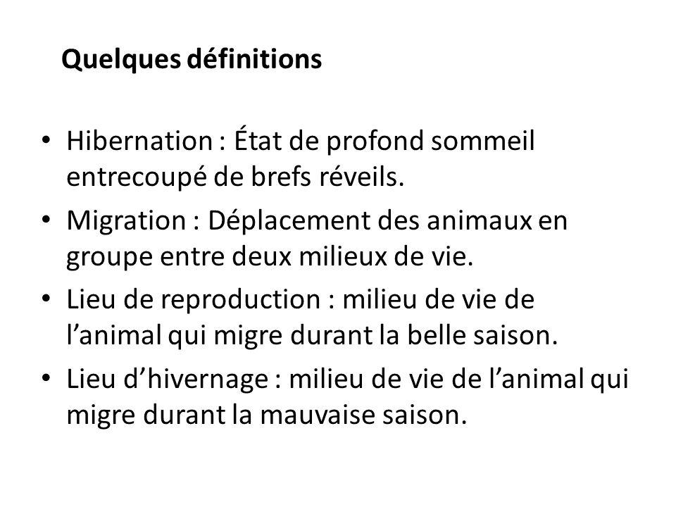 Quelques définitions Hibernation : État de profond sommeil entrecoupé de brefs réveils. Migration : Déplacement des animaux en groupe entre deux milie