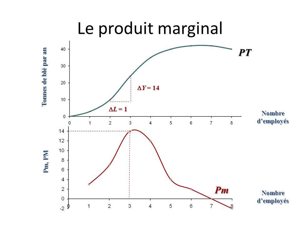 Le produit marginal Tonnes de blé par an Pm, PM Y = 14 Y = 14 L = 1 L = 1 Pm = Y / L = 14 Nombre demployés PT
