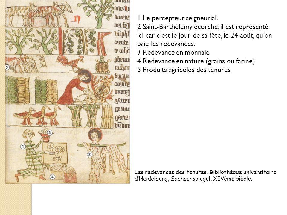 Les redevances des tenures. Bibliothèque universitaire dHeidelberg, Sachsenspiegel, XIVème siècle. 1 Le percepteur seigneurial. 2 Saint-Barthélemy éco