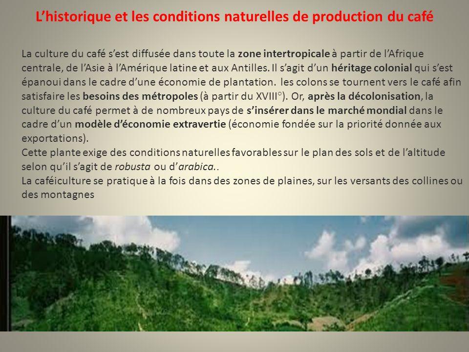 Lhistorique et les conditions naturelles de production du café La culture du café sest diffusée dans toute la zone intertropicale à partir de lAfrique