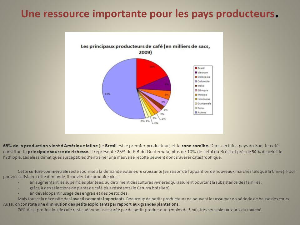 Une ressource importante pour les pays producteurs. 65% de la production vient dAmérique latine (le Brésil est le premier producteur) et la zone caraï