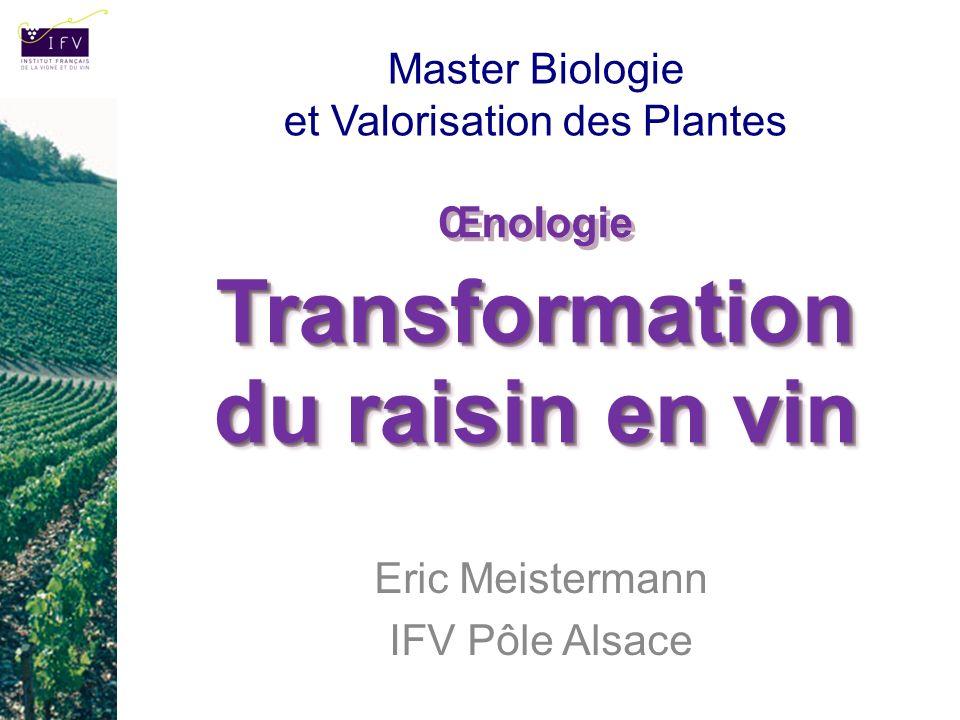 Transformation du raisin en vin Œnologie Transformation du raisin en vin Eric Meistermann IFV Pôle Alsace Master Biologie et Valorisation des Plantes
