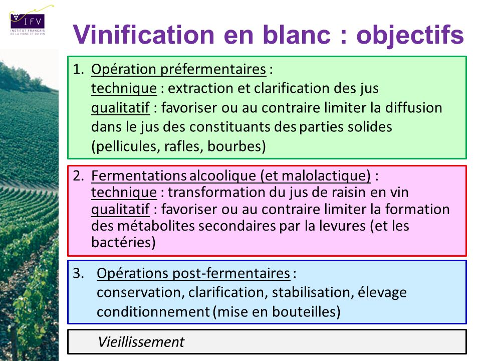 Vinification en blanc : objectifs 3.Opérations post-fermentaires : conservation, clarification, stabilisation, élevage conditionnement (mise en boutei