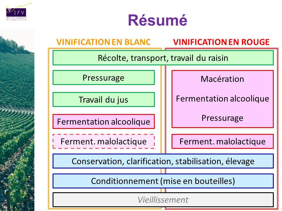 Résumé Pressurage Travail du jus Fermentation alcoolique Ferment. malolactique Macération Fermentation alcoolique Pressurage Ferment. malolactique VIN