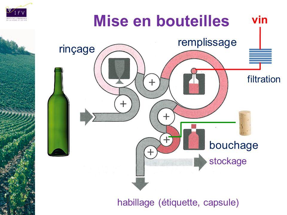 Mise en bouteilles rinçage remplissage bouchage habillage (étiquette, capsule) filtration vin stockage