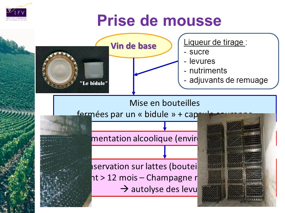Prise de mousse Fermentation alcoolique (environ 1 à 3 mois) Vin de base Liqueur de tirage : -sucre -levures -nutriments -adjuvants de remuage Mise en