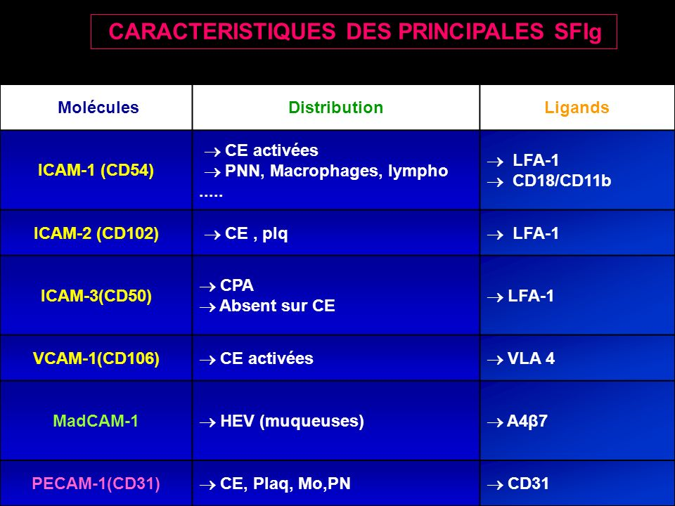 MoléculesDistributionLigands ICAM-1 (CD54) CE activées PNN, Macrophages, lympho.....