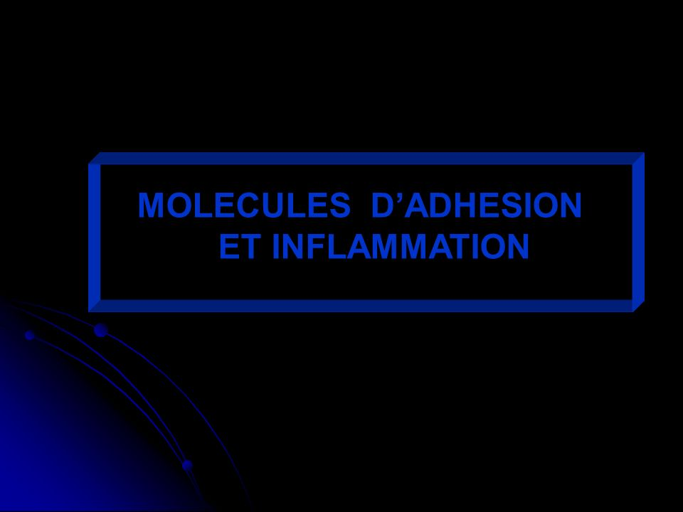 MOLECULES DADHESION ET INFLAMMATION
