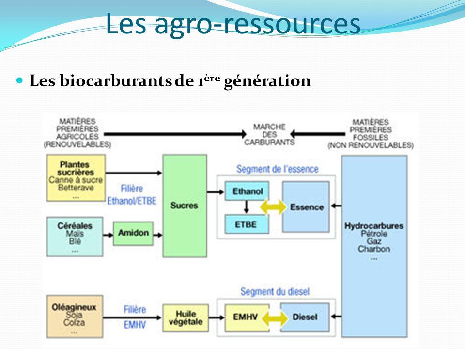 Les agro-ressources Les biocarburants de 1 ère génération