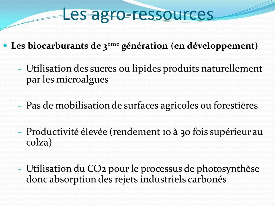 Les agro-ressources Les biocarburants de 3 ème génération (en développement) - Utilisation des sucres ou lipides produits naturellement par les microa