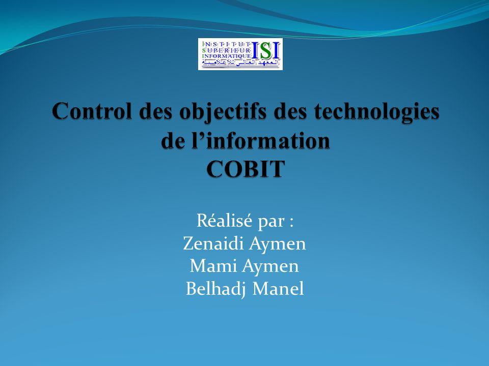 Plan Introduction Définition du COBIT Les domaine du COBIT Les ressources et les objectifs Les apports de COBIT Conclusion Bibliographie 12