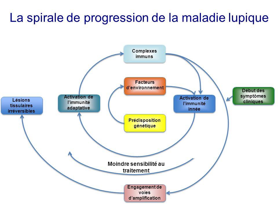 Facteurs denvironnement Complexes immuns Activation de limmunité innée Prédisposition génétique Activation de limmunité adaptative Début des symptômes cliniques Engagement de voies damplification Lésions tissulaires irréversibles Moindre sensibilité au traitement La spirale de progression de la maladie lupique