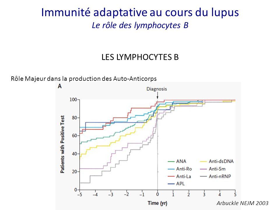 LES LYMPHOCYTES B Rôle Majeur dans la production des Auto-Anticorps Arbuckle NEJM 2003 Immunité adaptative au cours du lupus Le rôle des lymphocytes B