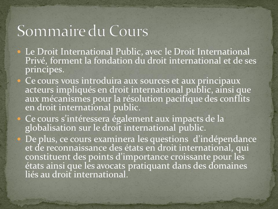 Le Droit International Public, avec le Droit International Privé, forment la fondation du droit international et de ses principes.