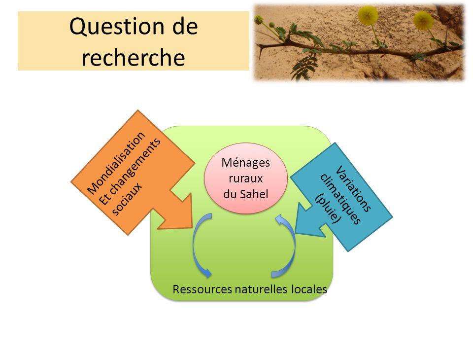 Question de recherche Ménages ruraux du Sahel Ressources naturelles locales Variations climatiques (pluie) Mondialisation Et changements sociaux