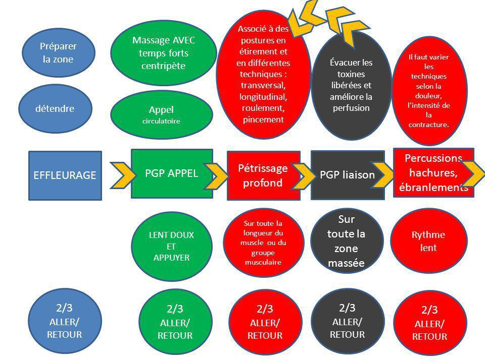 EFFLEURAGE 2/3 ALLER/ RETOUR détendre Massage AVEC temps forts centripète PGP APPEL 2/3 ALLER/ RETOUR Appel circulatoire Préparer la zone Pétrissage p