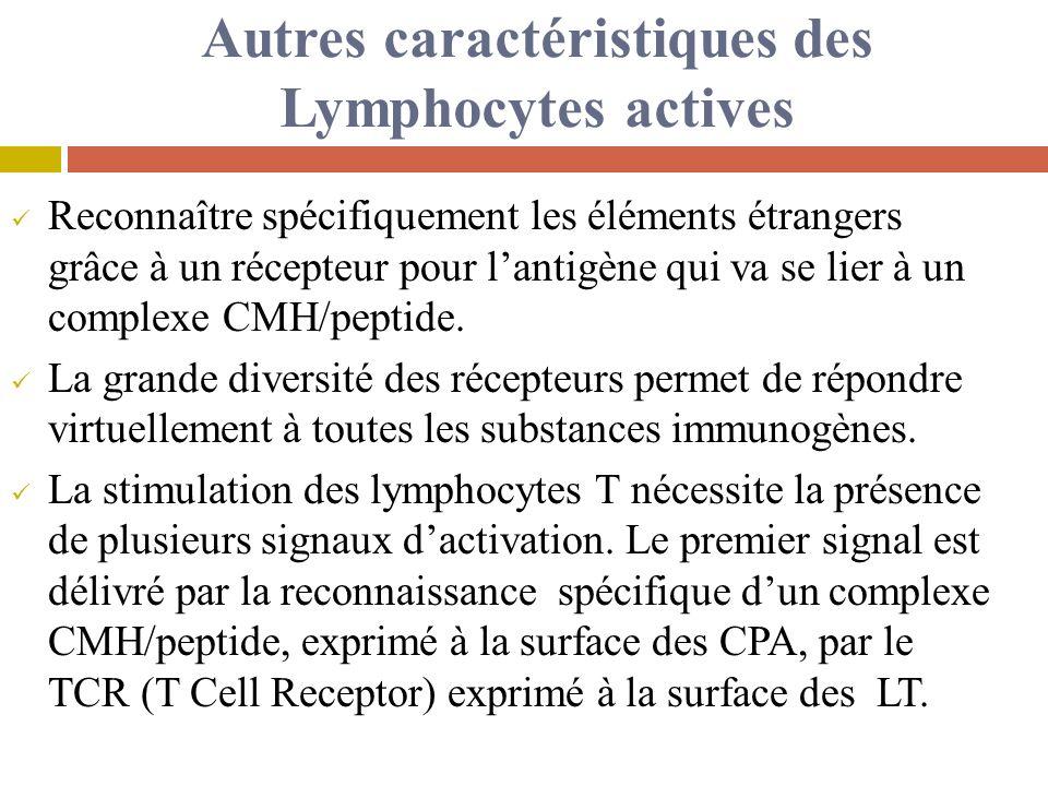Autres caractéristiques des Lymphocytes actives Reconnaître spécifiquement les éléments étrangers grâce à un récepteur pour lantigène qui va se lier à