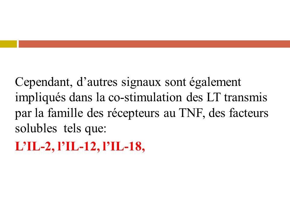 Cependant, dautres signaux sont également impliqués dans la co-stimulation des LT transmis par la famille des récepteurs au TNF, des facteurs solubles