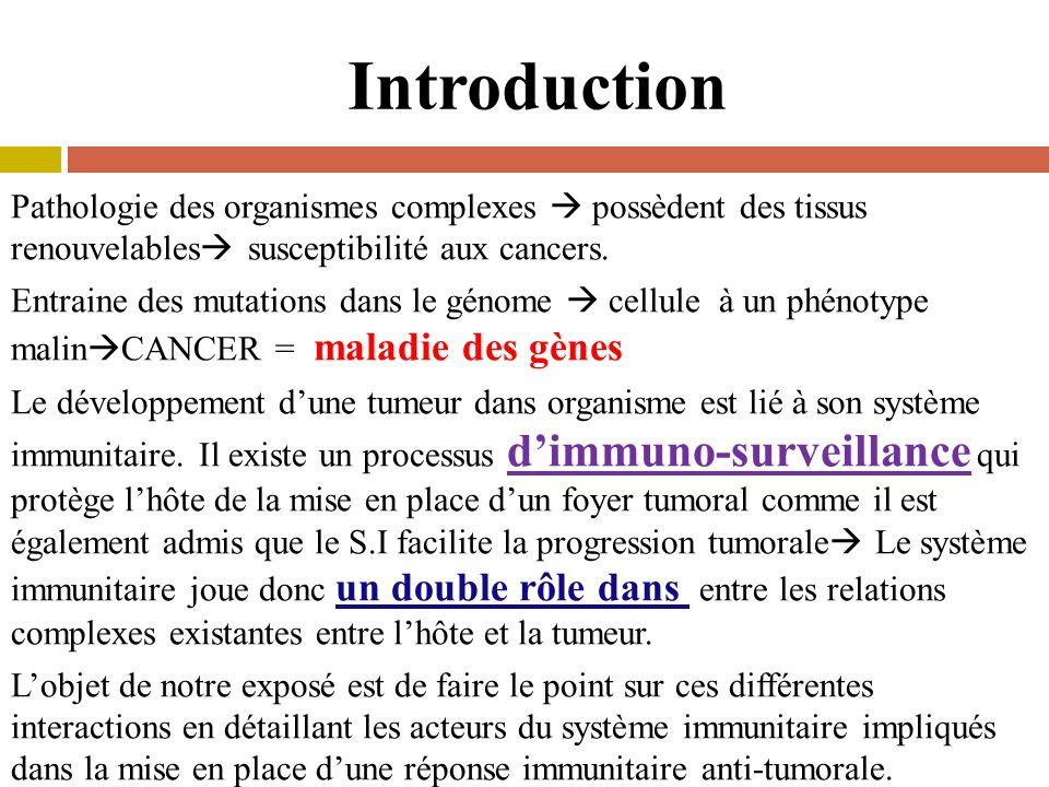Croissance indéfinie, Arrêt de différenciation, Perte de linhibition de contact, Acquisition dun phénotype invasif.