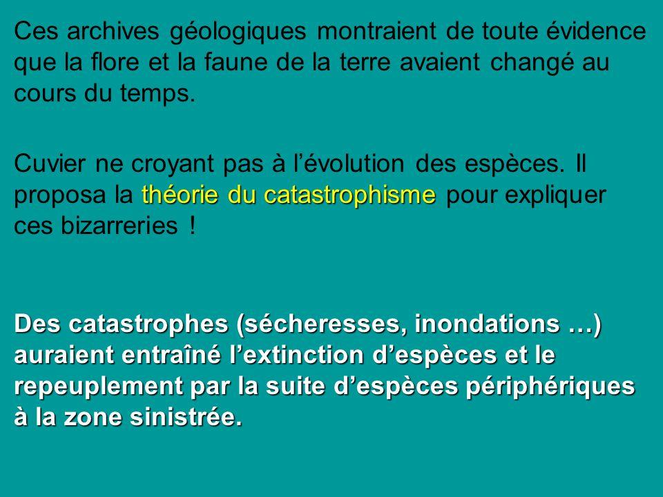 théorie du catastrophisme Cuvier ne croyant pas à lévolution des espèces.