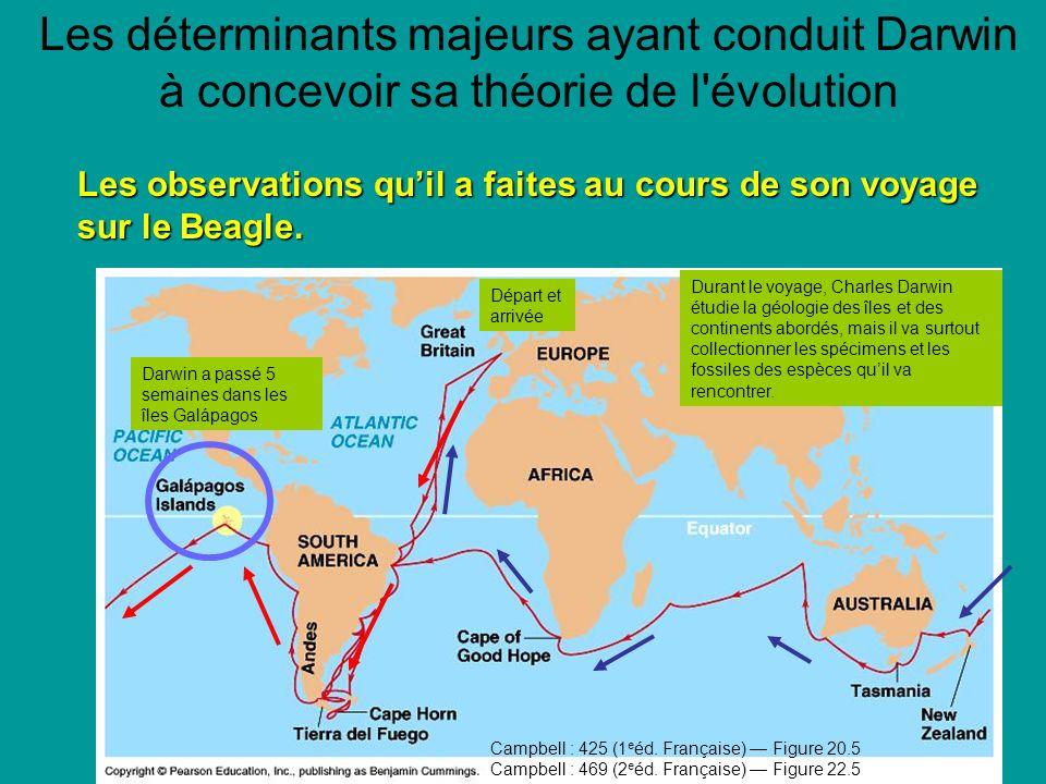 Les déterminants majeurs ayant conduit Darwin à concevoir sa théorie de l évolution Les observations quil a faites au cours de son voyage sur le Beagle.