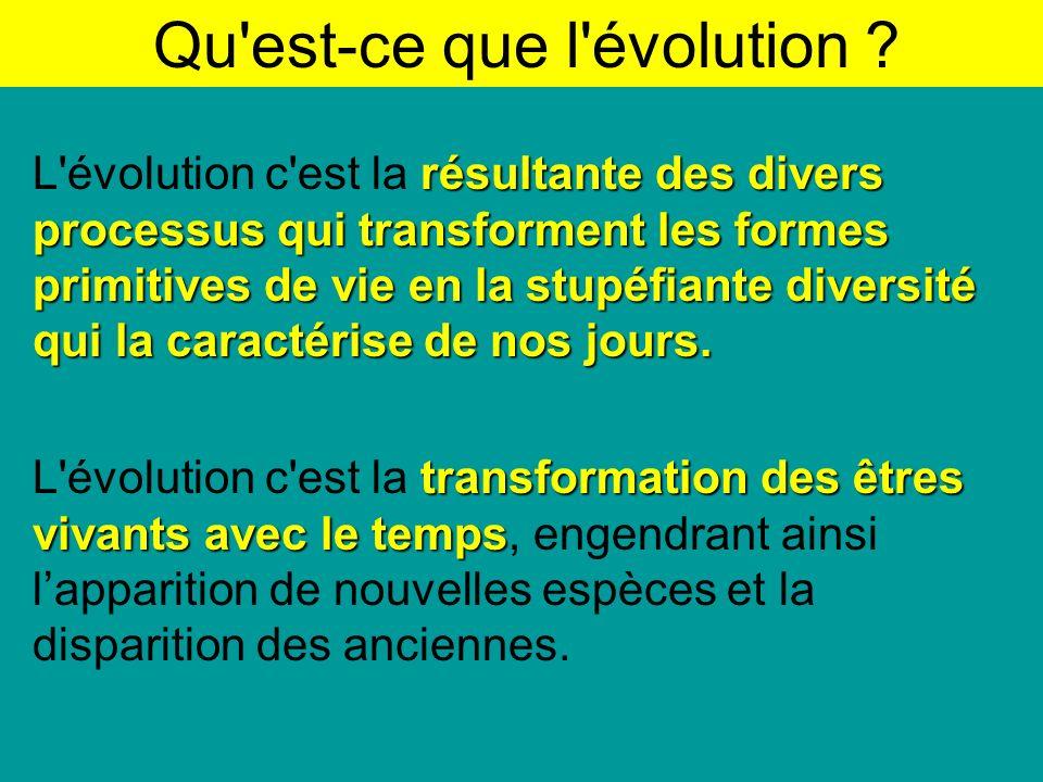 Bilan du travail de Lamarck, Darwin et Wallace 1)Ils croyaient tous trois à lévolution et à ladaptation des organismes à leur milieu comme résultat de lévolution.