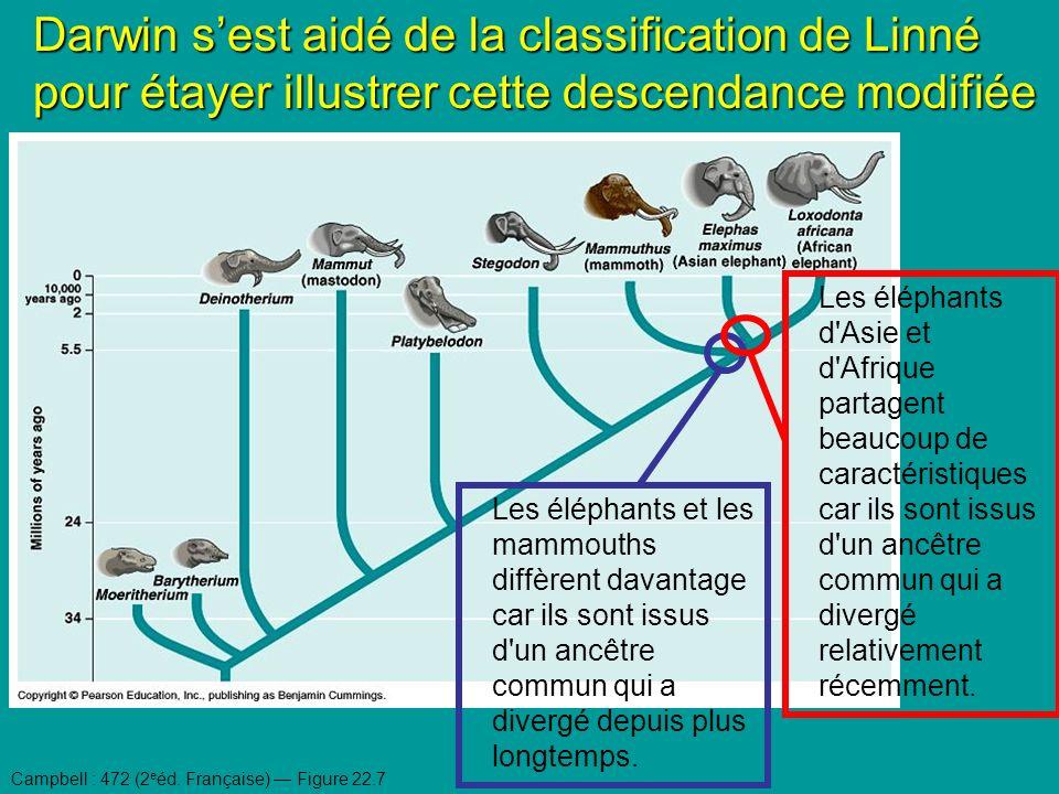 Les éléphants et les mammouths diffèrent davantage car ils sont issus d un ancêtre commun qui a divergé depuis plus longtemps.