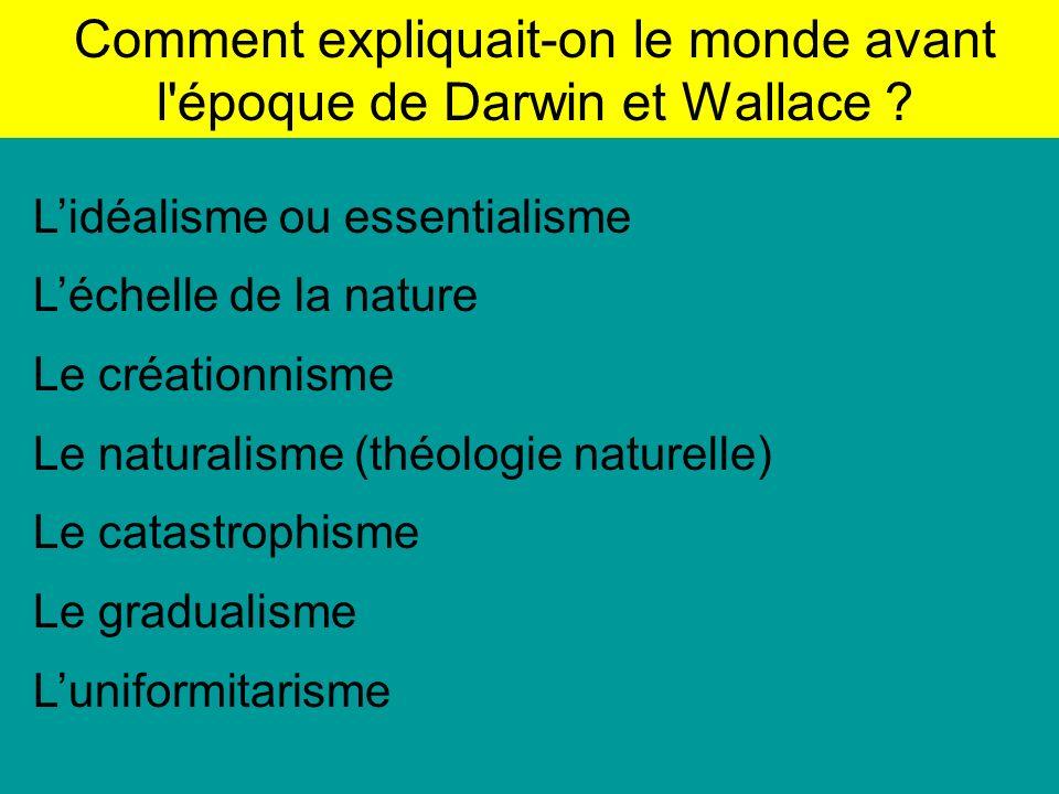 Comment expliquait-on le monde avant l époque de Darwin et Wallace .