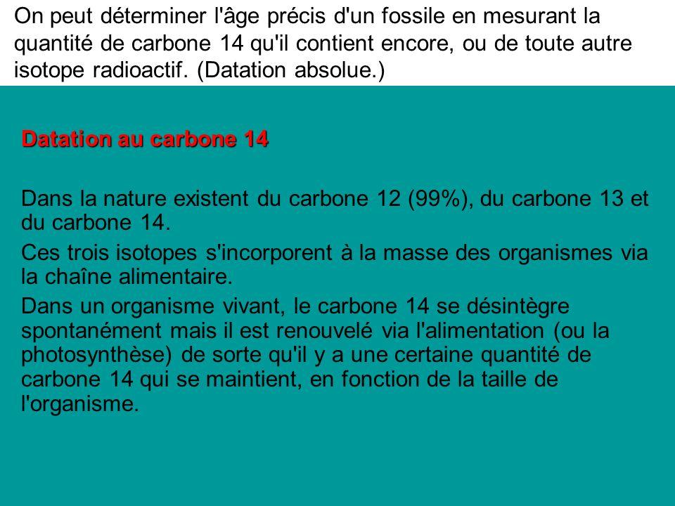 On peut déterminer l âge précis d un fossile en mesurant la quantité de carbone 14 qu il contient encore, ou de toute autre isotope radioactif.