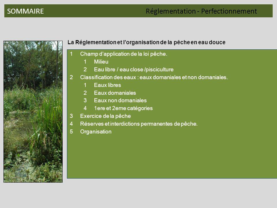 SOMMAIRERéglementation - Perfectionnement La Réglementation et lorganisation de la pêche en eau douce 1Champ dapplication de la loi pêche. 1Milieu 2Ea