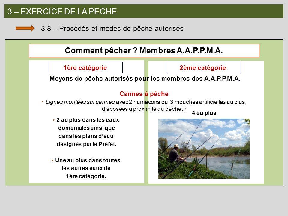 3 – EXERCICE DE LA PECHE 3.8 – Procédés et modes de pêche autorisés Comment pêcher ? Membres A.A.P.P.M.A. 1ère catégorie2ème catégorie 2 au plus dans