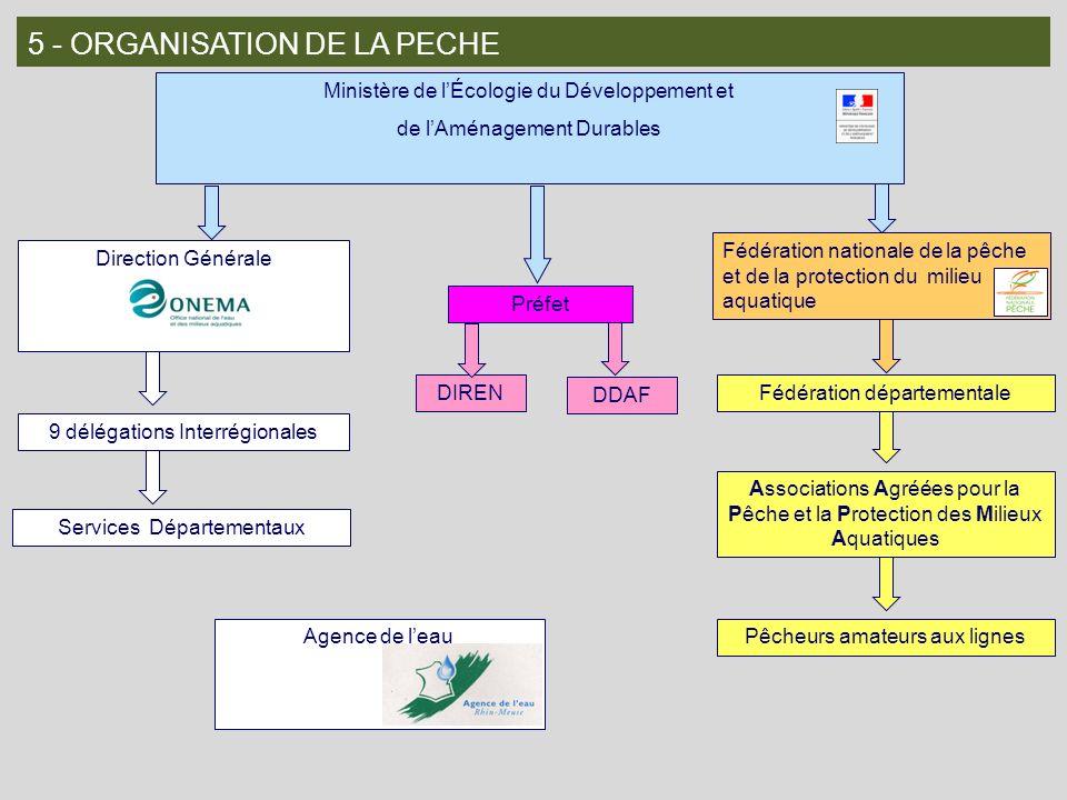 5 - ORGANISATION DE LA PECHE Ministère de lÉcologie du Développement et de lAménagement Durables Direction Générale 9 délégations Interrégionales Serv