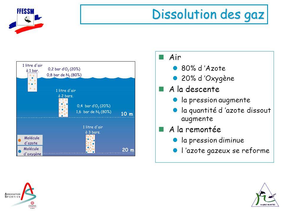 Dissolution des gaz Air 80% d Azote 20% d Oxygène A la descente la pression augmente la quantité d azote dissout augmente A la remontée la pression di